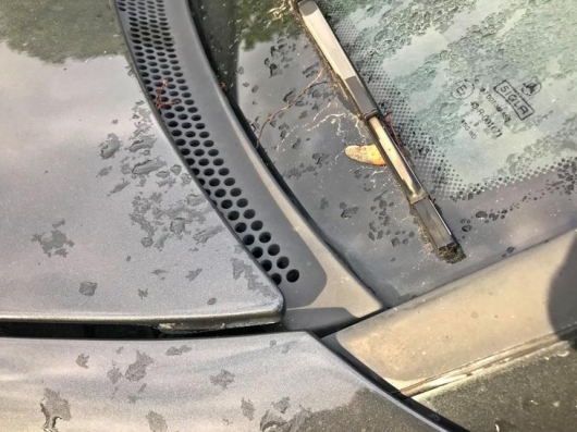 Where does the water in the car? This is a big problem in spring and autumn