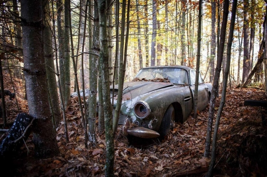20 strange places, where he found honey abandoned cars