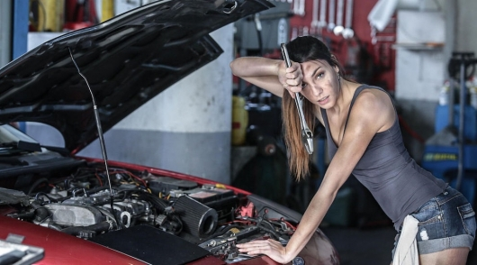 How to cheat on car repair: don't let them breed for money