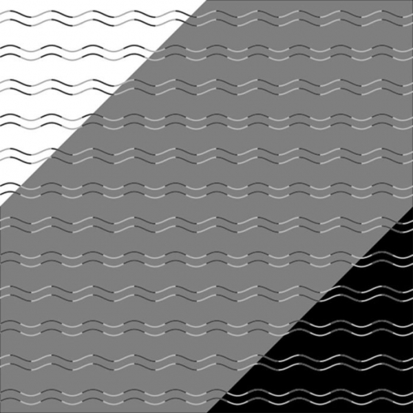 12 optical illusions that will blow your mind